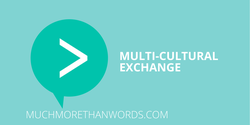 MMTW - The Multi-Cultural Exchange  Public Workshop. Product thumbnail image